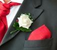 Wedding Portfolios