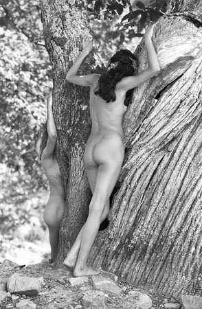 Nudes in trees